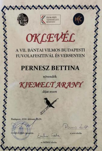 Pernesz Bettina arany (1)