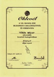 Török Bálint arany 001