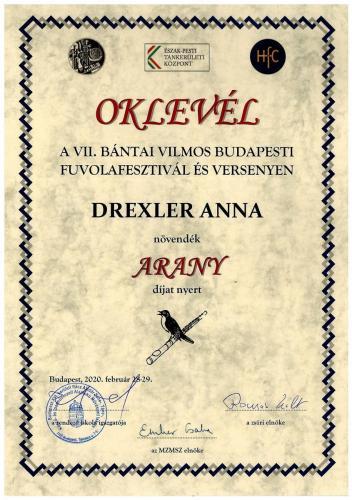 Drexler Anna arany